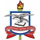 logo_ufpa_140