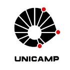 logo_unicamp_140.jpg